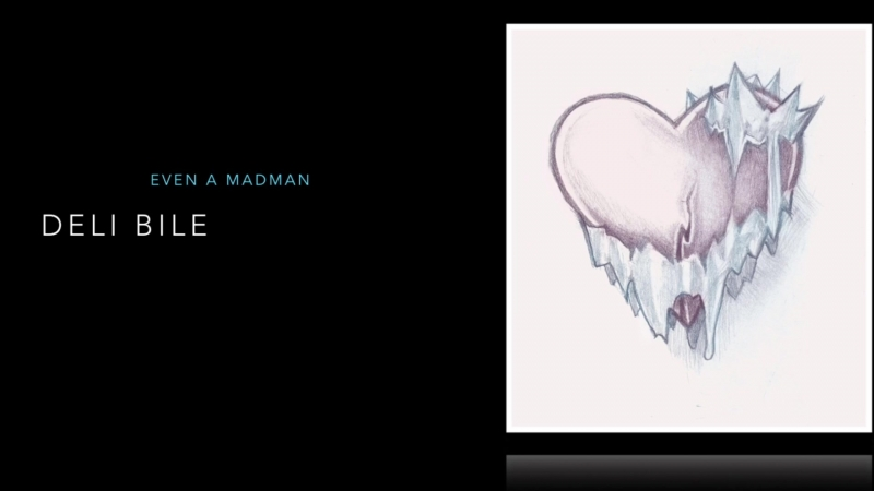 Deli Bile | Even a Madman – Cover