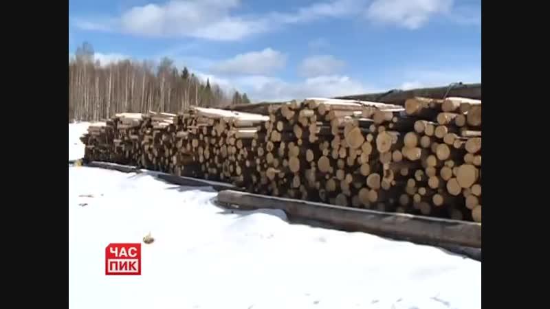 ЛЗ ПК Гаинского района сплавят 400 т/ куб леса