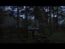 Район д. Красный Яр, Велижанский тракт. Доброе утро, -говорят Вам птицы в лесу. Пение птиц в 3 часа ночи/утра. Не монтаж.