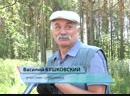 Субботник в Комсомольском парке