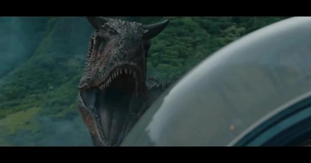 ROAARR! (Fossils)