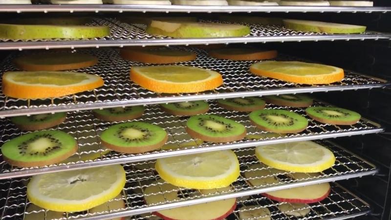 Все о дегидраторе Dream Vitamin DDV 07 делаем фруктовые чипсы