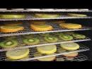 Все о дегидраторе Dream Vitamin DDV-07 делаем фруктовые чипсы!