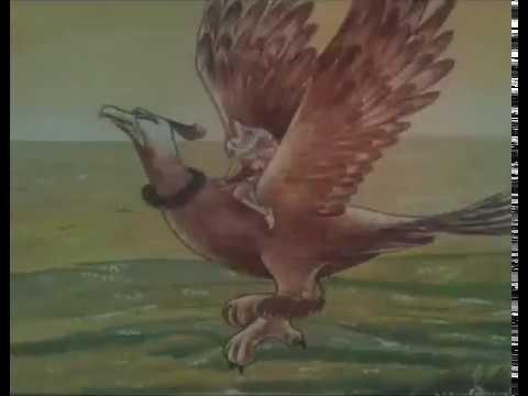 Советский мультфильм для взрослых Грузия фильм Всадники жар-птицы