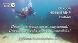 Дайвинг в Крыму - Diving-scuba.ru Дайвинг Севастополь. Погружение с инструктором.