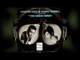 MARVIN GAYE and TAMMI TERRELL something stupid