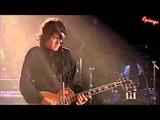 Gary Moore - Separate ways (Subt Espa