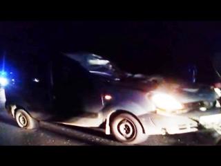 Автомобиль на трассе М8 сбил лося