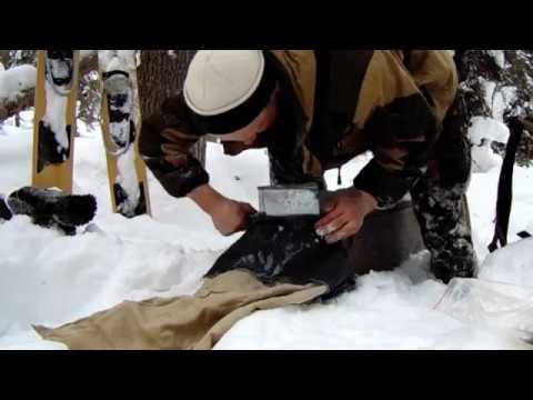 Отлов и мечение соболя в Печоро-Илычском заповеднике