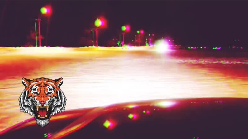 Evil Tiger.mp4
