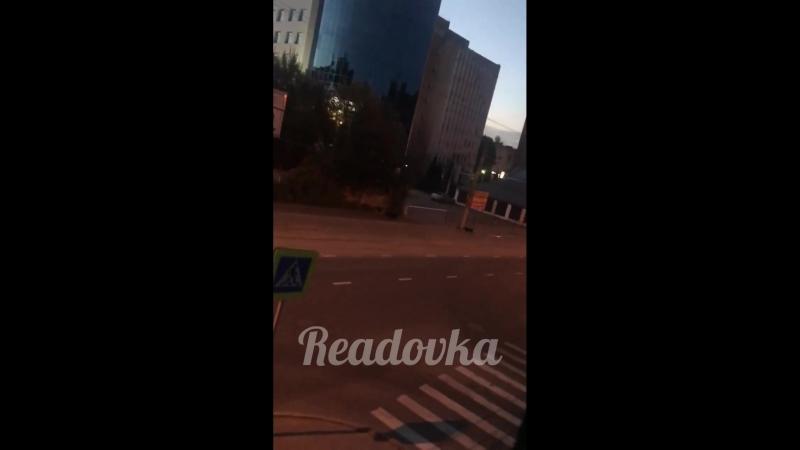 Бездомные собаки в Смоленске атакуют случайных прохожих
