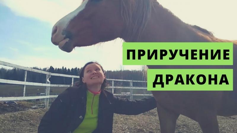 Ира и Закадка (Москва, Россия)