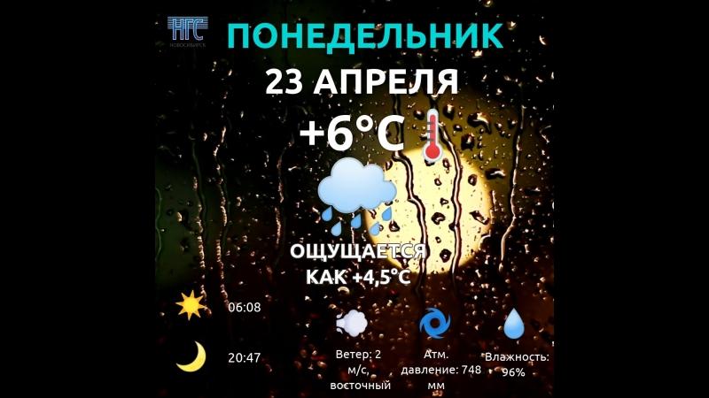 погода 23 апреля