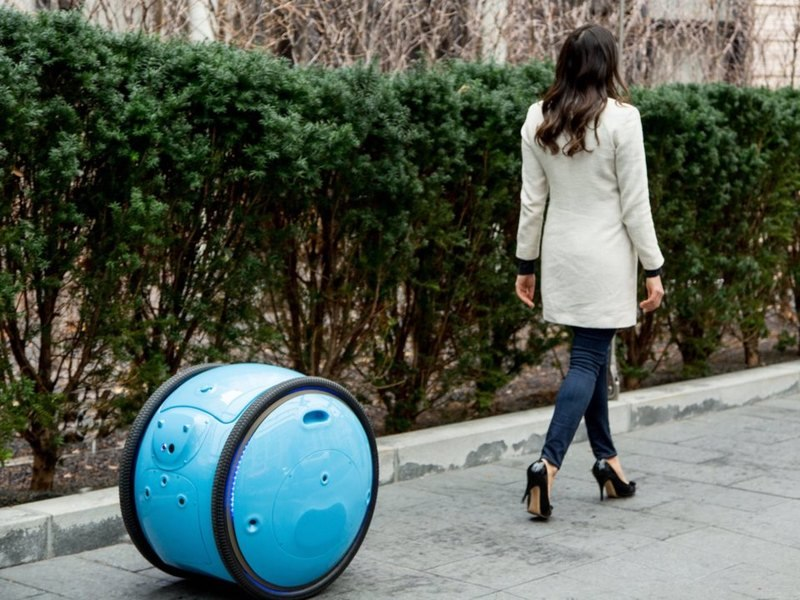 Gita: робот-чемодан