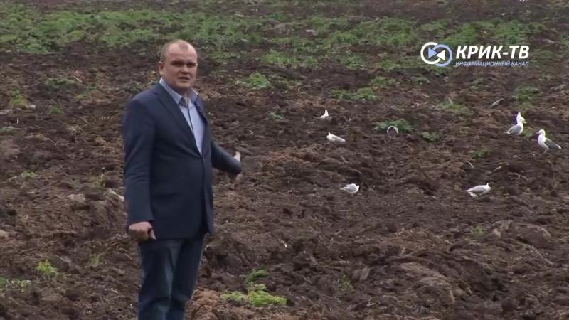 Журналисты и Камаев выехали на поле