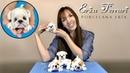 🐶 Erica Ferrari Porcelana Fría Cachorro Corcho Bulldog Clase Gratis DIY Tutorial Fácil