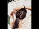 Интересная прическа на длинные волосы!