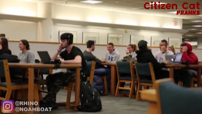 [Citizen Cat Pranks] Слушает зашкварную музыку в библиотеке - Часть 3 (Реакции)