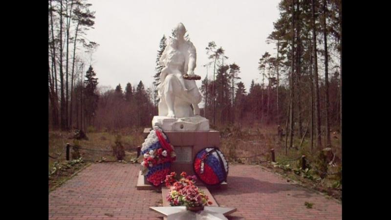 Памятник павшему лётчику