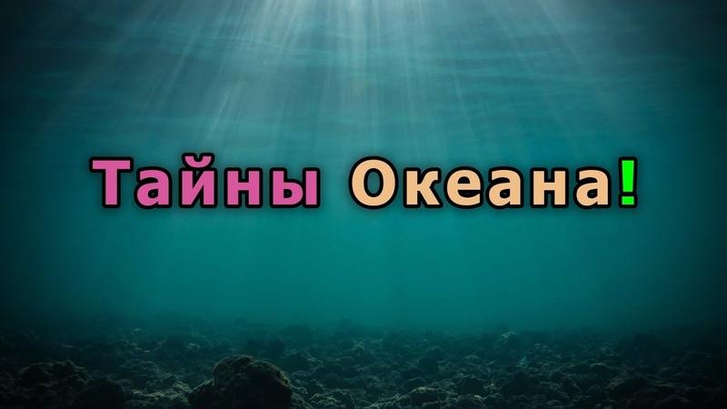 Так что скрывает на самом деле подводный мир?