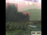 Художественная покраска уличной стены плиолитовой краской Брадайт