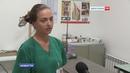 Ветеринары напоминают: необходима вакцинация от бешенства