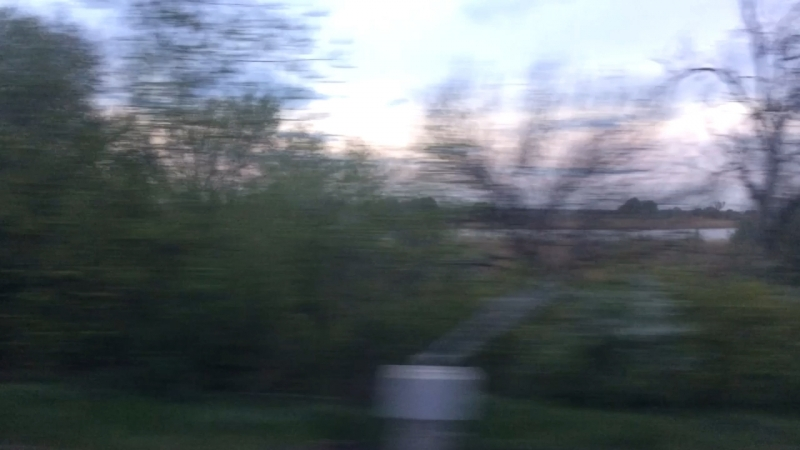 Романтика под стук колёс... Кстати, а за окном все уже цветёт