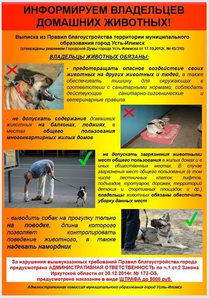 Информация для владельцев домашних животных