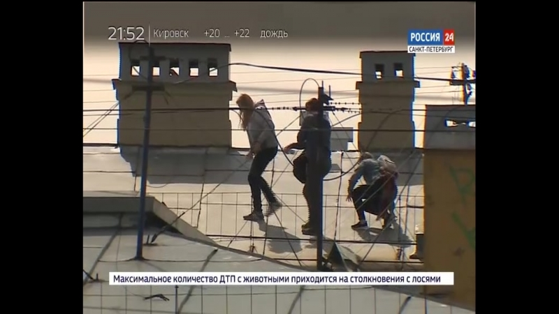 ВЕСТИ 24 - Санкт-Петербург от 21.06.2018 россия24 vestispb вестиспб vesti spbnews