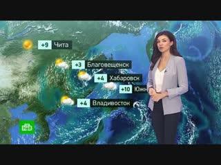 Утренний прогноз погоды на 29 октября