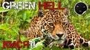 Green Hell - Перевод обновления Patch V.0.1.2 Зеленый Ад - Кися! 4