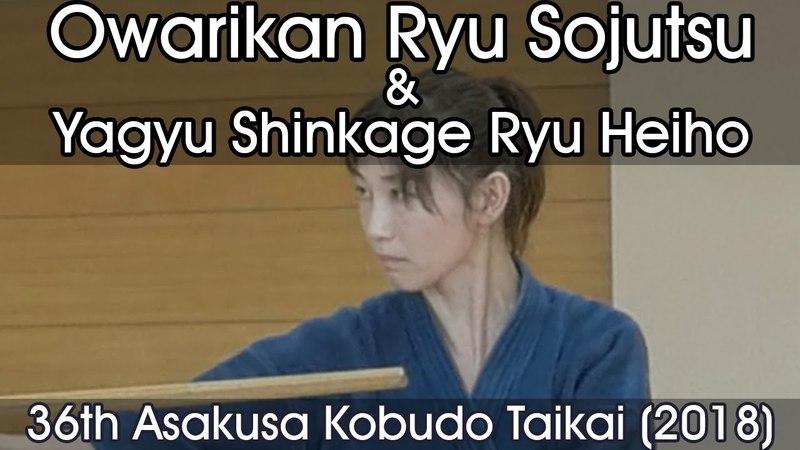 Owarikan Ryu Sojutsu Yagyu Shinkage Ryu Heiho 36th Asakusa Kobudo Taikai 2018