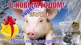 Прикольное видео поздравление С НОВЫМ 2019 ГОДОМ! С новым годом друзья!