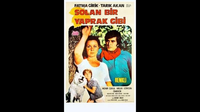 Solan Bir Yaprak Gibi (1971) - Fatma Girik _ Tarık Akan