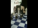 Пожалуй, лучшие шахматы в городе (InstaStory 15.06)