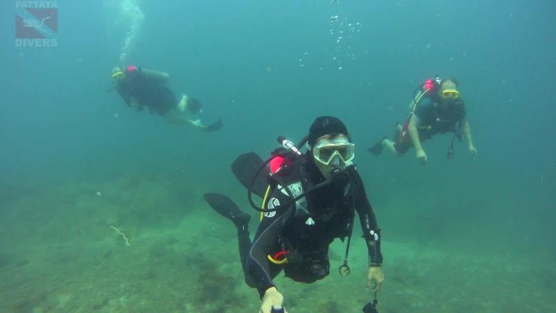 Turtle Point острова Ко-Чуан архипелага Самесан | Дайвинг в Паттайе