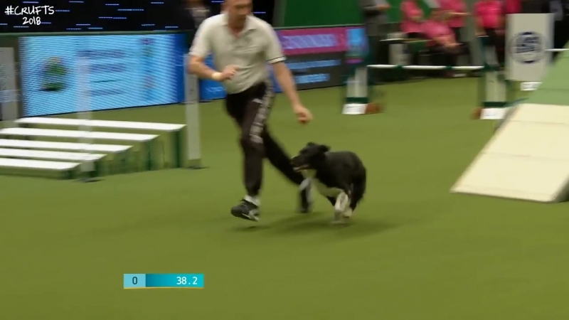 Agility - Kennel Club British Open Final (Agility) Part 2 _ Crufts 2018