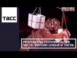 Результаты полуфиналов ЧМ по версии оленя и тигра