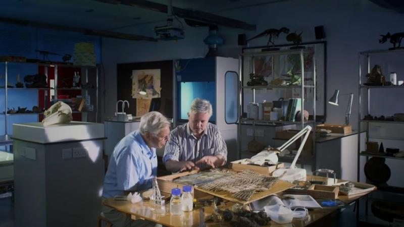 Крылатые монстры с Дэвидом Аттенборо - Flying Monsters with David Attenborough (2011)
