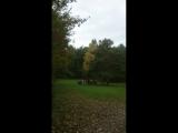 Случайное видео нашей вечёрки))) в Парке у Моря Обского, 22.09.2018