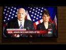 Телеканал NBC отметил смерть сенатора Маккейна мастурбацией жирных дельфинов (США)