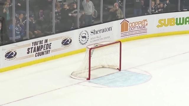 Вратарь клуба NHL забил гол