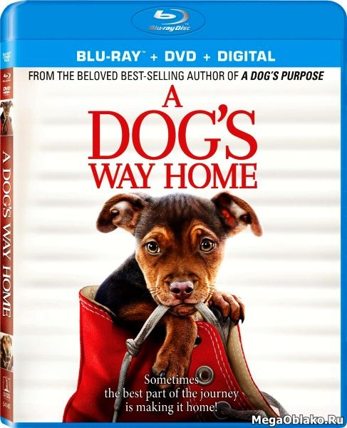 Путь домой / A Dog's Way Home (2019/BDRip/HDRip)