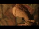 Nirvana - Smells Like Teen Spirit (Sock Puppet Parody).mp4