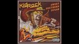 Kid Rock - Grandpas Jam (Audio)