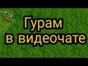 Гурам в видеочате) скоро полный ролик