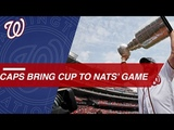 Capitals bring Stanley Cup to Nationals game