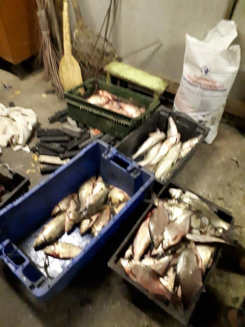 В Таганрогском заливе сотрудники Погрануправления ФСБ задержали двух браконьеров