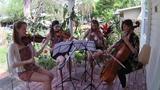 Carry On Wayward Son string quartet cover (Thalia Strings)