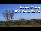 Just an epic drive in The Van Stadens Wildflower Reserve WoW it was a great trip in Port Elizabeth